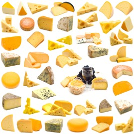 https://cheeseheadsdoc.files.wordpress.com/2010/07/cheese-world.jpg?w=269&h=269