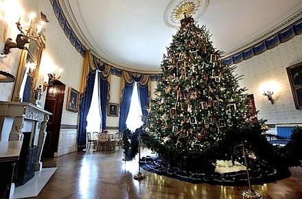 White House Tree 04