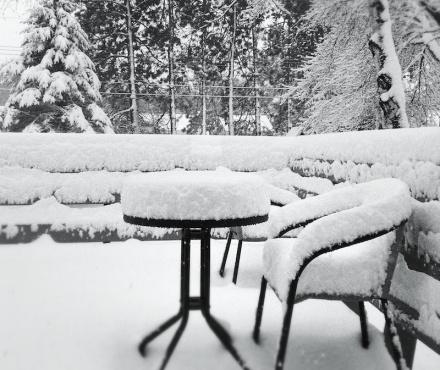 DEE Snow 50213 (H)