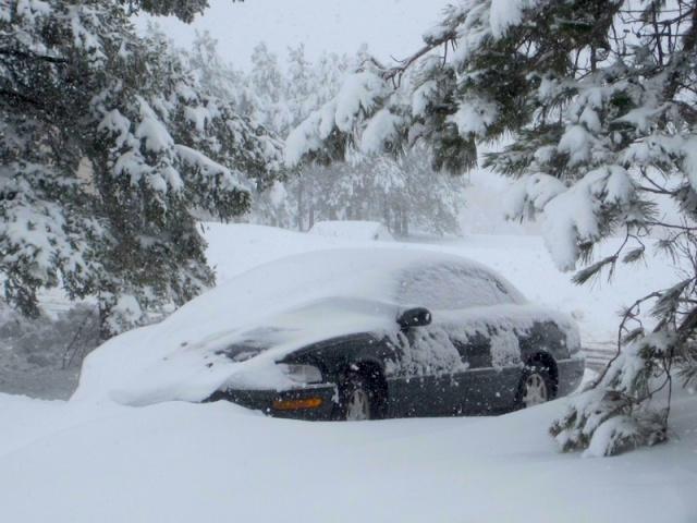 SNOW May DEB Car (s)