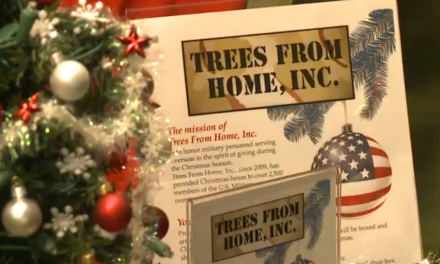 Trees For Over Seas