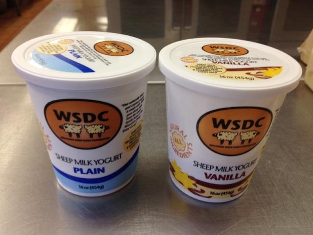 WSDC Cheese 10