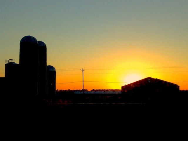 SUNSET on 41 FARM 02